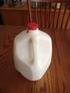 1 gallon of raw milk