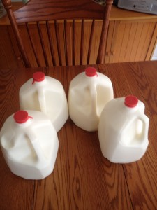 4 gallons of raw milk