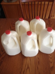 5 gallons of raw milk